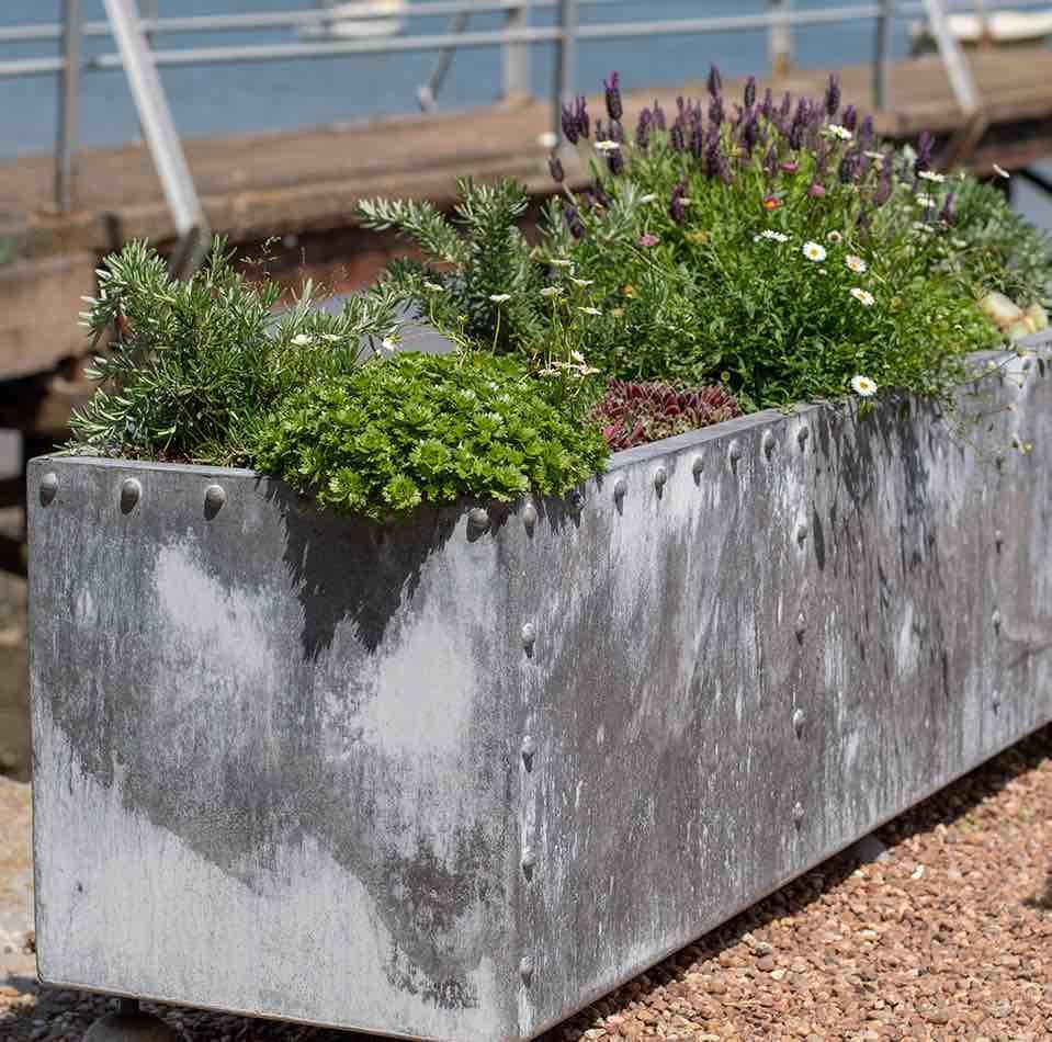 Sam Westcott Garden Design